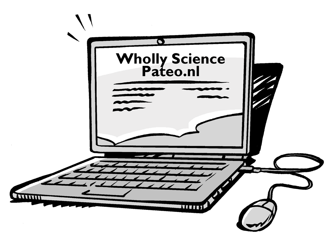 Stay up to date with the News on Pateo.nl