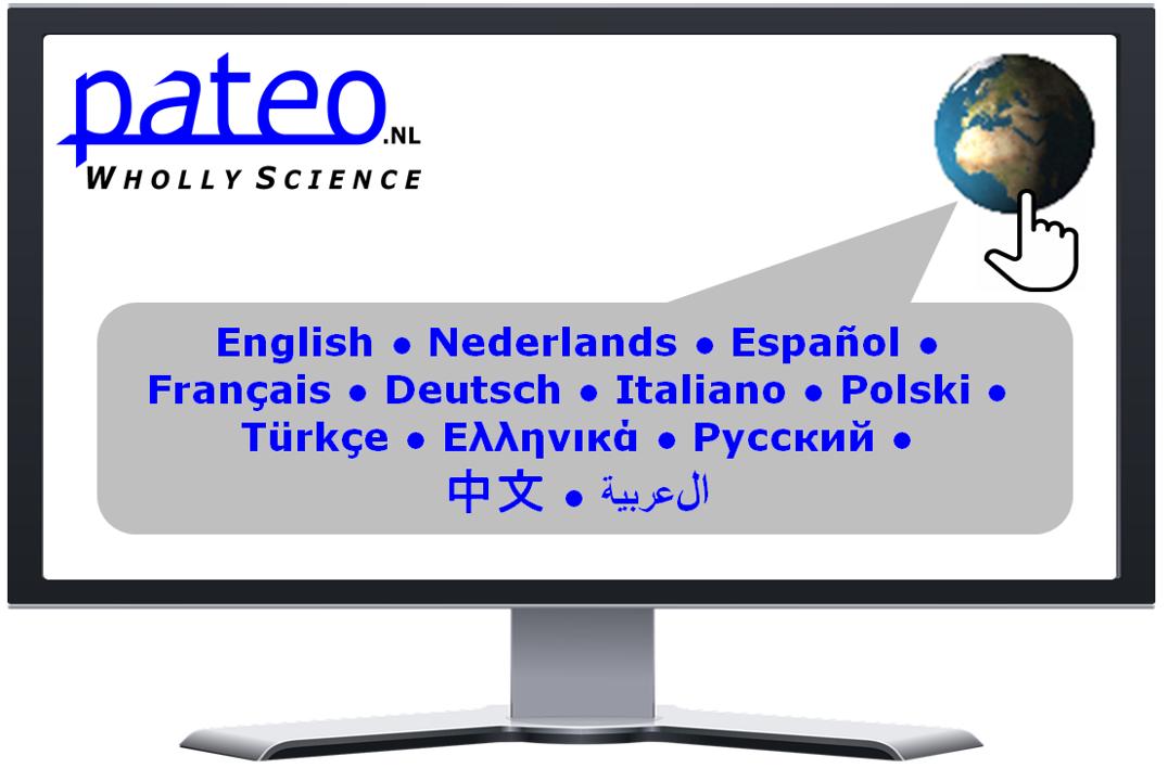 Select Language on Computer